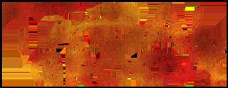 Tribal Groove Logo